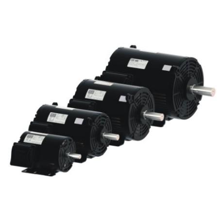 Severe duty general purpose motors valin tsa for Weg severe duty motor